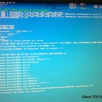 Chat Client TCP (ACER)